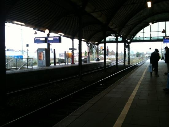 20111230-100230.jpg